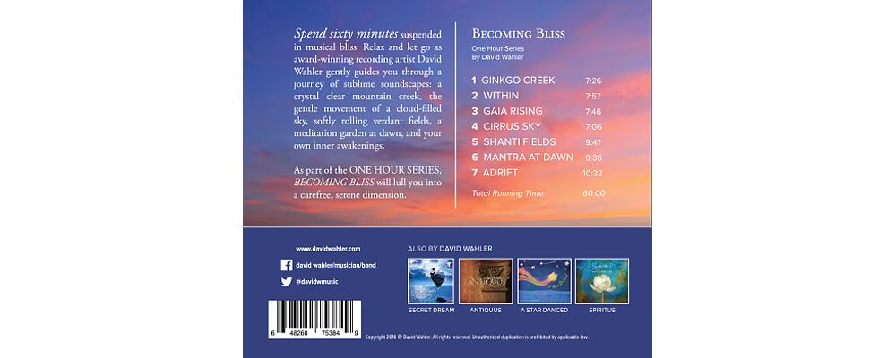 Bliss-back-cover-1000x400.jpg